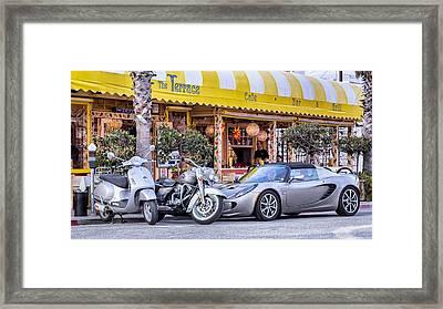 Gray Matter Framed Print