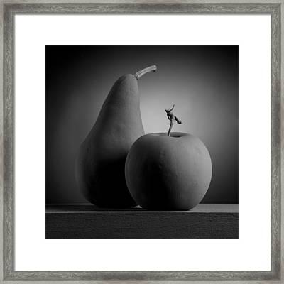 Gray Variations - Apples Framed Print by Ovidiu Bastea