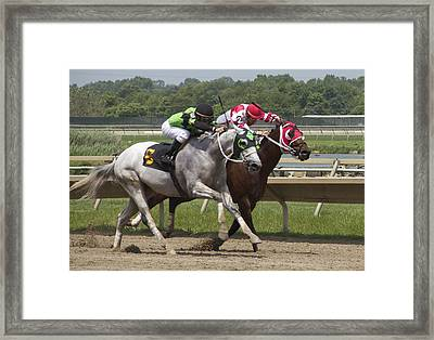 Framed Print featuring the photograph Gray Vs Bay by Alice Gipson