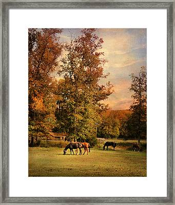 Grazing In Autumn Framed Print by Jai Johnson