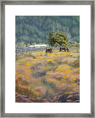 Grazing Framed Print by Kurt Jacobson