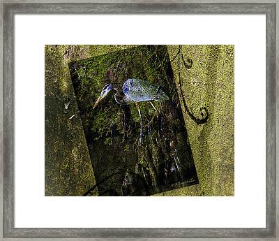 Great Blue Heron - Abstract Framed Print