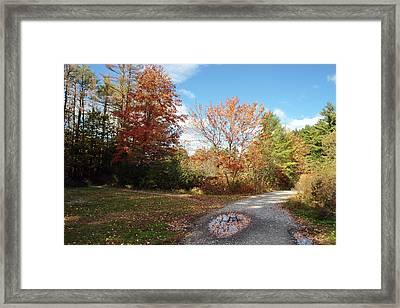 Great Brook Farm Framed Print by Frank Garciarubio