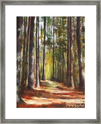 Great Brook Farm Summer Path Framed Print