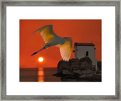 Great Egret Sunset In Skala Framed Print by Eric Kempson