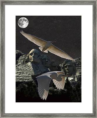 Great Egrets Mount Rushmore  Framed Print by Eric Kempson