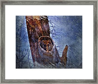 Great-horned Owl Nest Framed Print by J Larry Walker