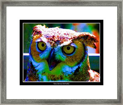 Great Horned Owl With Neon Effect Framed Print