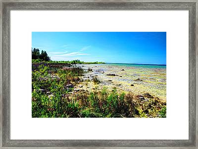 Great Lakes Summer Shoreline Framed Print by Janice Adomeit