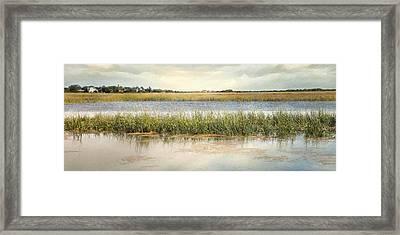 Great Marsh Framed Print by Karen Lynch
