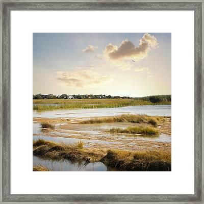 Great Marsh Ll Framed Print by Karen Lynch