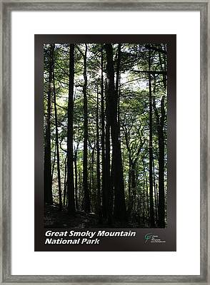 Great Smoky Mountains Np 003 Framed Print by Charles Fox