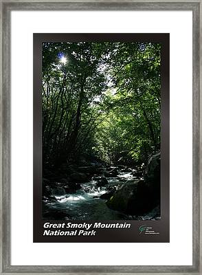 Great Smoky Mountains Np 007 Framed Print by Charles Fox