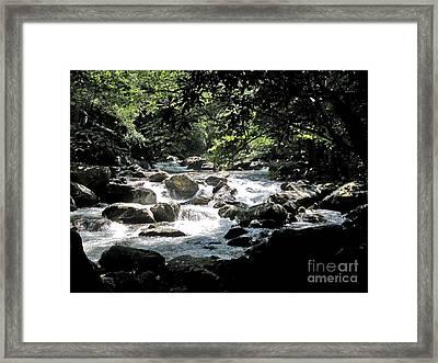 Great Stream Great Smokeys Framed Print by Don F  Bradford