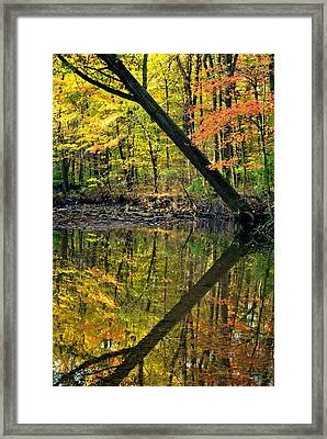Greater Than Framed Print by Frozen in Time Fine Art Photography