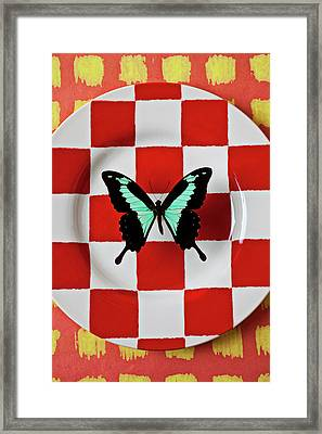 Green And Black Butterfly On Red Checker Plate Framed Print by Garry Gay