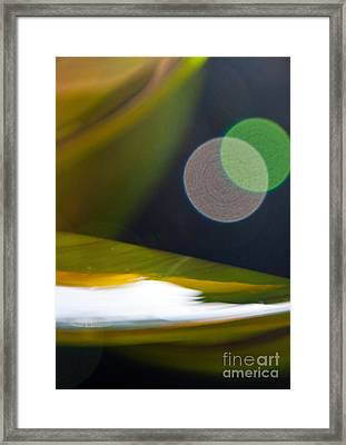 Green And Gold Abstract Framed Print by Dana Kern