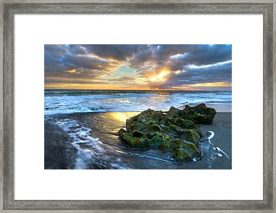 Green And Gold Framed Print by Debra and Dave Vanderlaan