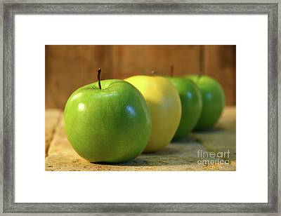 Green And Yellow Apples Framed Print by Sandra Cunningham