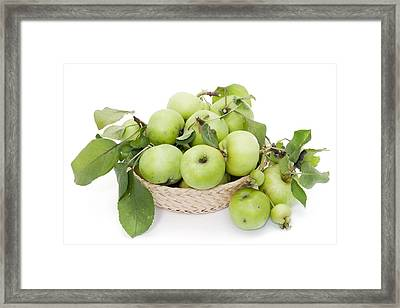 Green Apples In Basket Framed Print by Aleksandr Volkov