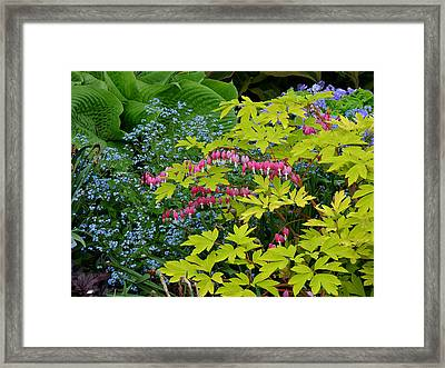 Framed Print featuring the photograph Green Bay Botanical Gardens by Judy  Johnson