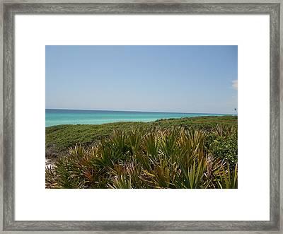 Green Beach Framed Print by Craig Keller