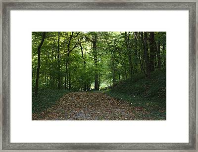 Green Cemetery Road Framed Print