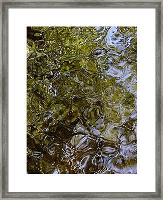 Green Dream Framed Print