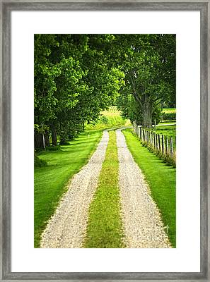 Green Farm Road Framed Print by Elena Elisseeva