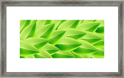 Green Feathers, Full Frame Framed Print