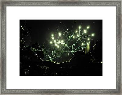 Green Fireworks Over A Soft Tail Framed Print by Tobey Brinkmann