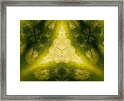 Green Floral Triangle Framed Print