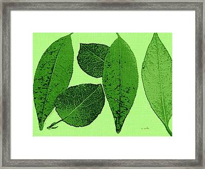 Green Foliage Graphic Framed Print by Chris Berry