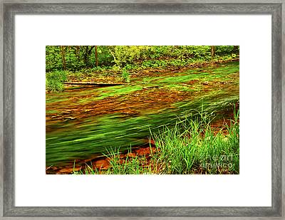 Green Forest River Framed Print by Elena Elisseeva