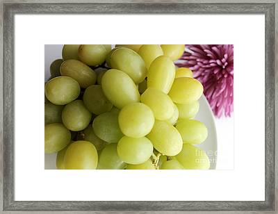 Green Grapes And Purple Mum Framed Print by Barbara Griffin