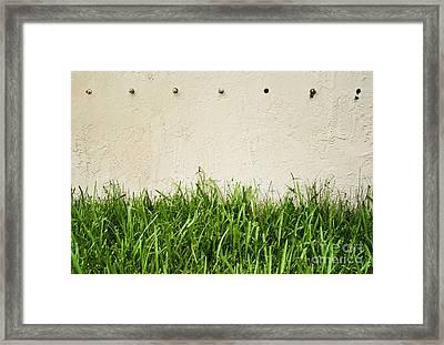 Green Grass Against Wall Framed Print