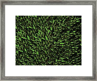 Green Leaf Framed Print by David Dehner
