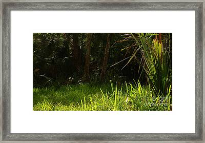Green Light Framed Print