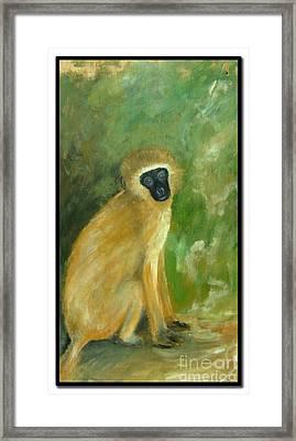 Green Monkey Framed Print