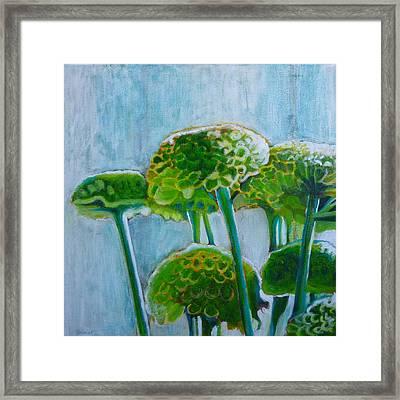 Green Mums Framed Print by Sandrine Pelissier