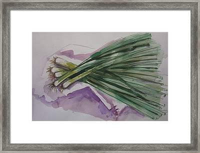 Green Onions Framed Print by Barbara Spies