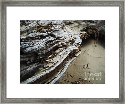 Green River 6 Framed Print by Kelsey Anderson
