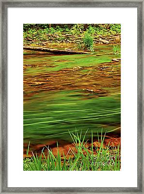 Green River Framed Print by Elena Elisseeva