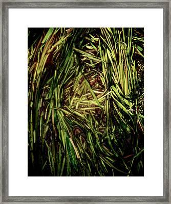 Green River Framed Print by Odd Jeppesen