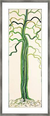 Green Sap Framed Print by Alain Guiguet