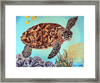 Green Seaturtle 1 Framed Print by Nanci Fielder