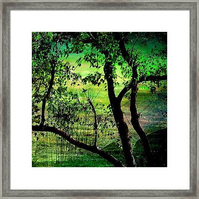 Green Framed Print by Shirley Sirois