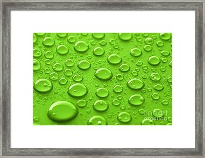 Green Water Drops Framed Print