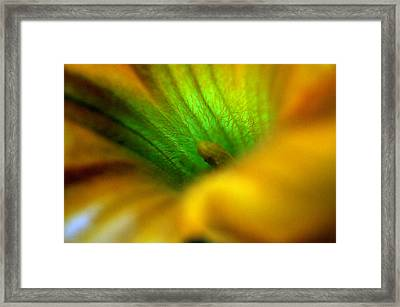 Greener On The Other Side Framed Print by Wanda Brandon