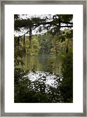 Greenfield Lake Framed Print by Christina Durity